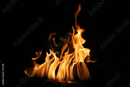flammes Canvas Print