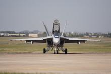 Fa/18 Super Hornet (face)