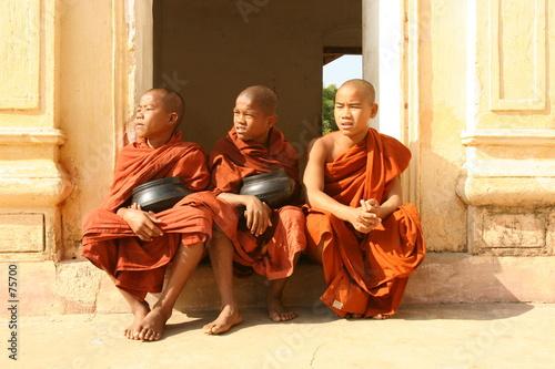 Foto monks