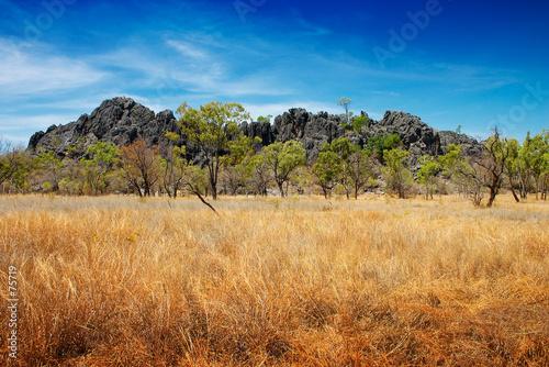 Carta da parati australian outback