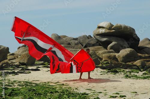 Foto auf AluDibond Drachen le papillon rouge