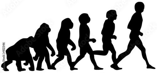 human evolution Wallpaper Mural