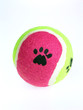 canvas print picture - paw ball