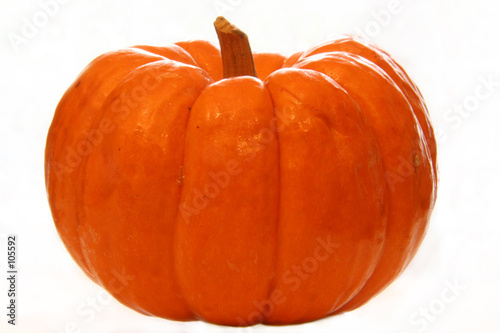 Fotografie, Obraz  little pumpkin ii (isolated)