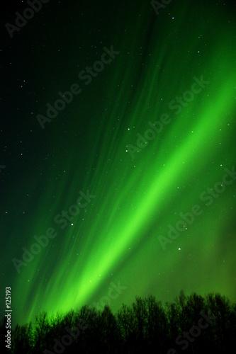 Photo  very detailed aurora