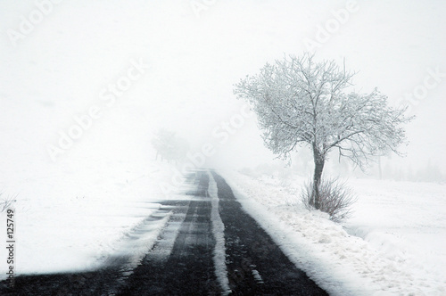 tempête de neige Canvas Print