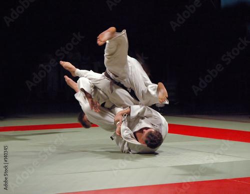 Deurstickers Vechtsport judo fight