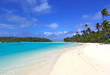 Leinwandbild Motiv tropical
