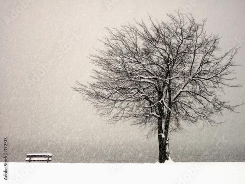 Fotografie, Obraz  hudson river snow