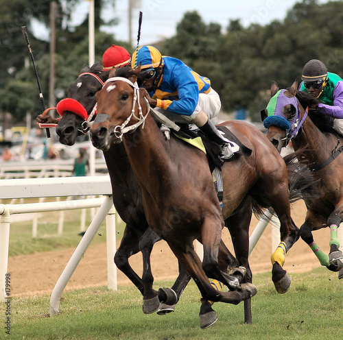 Fotografia horse racing