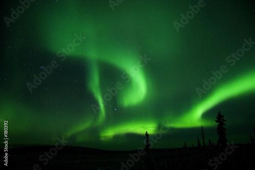 Fotografia, Obraz  aurora all over the sky