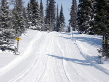 Outdoor Trail In Winter