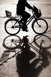 jazda na rowerze w bejing - 221338