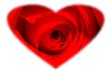 canvas print picture rose with a heart mask