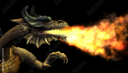 Fotografie, Tablou  fire breathing dragon portrait