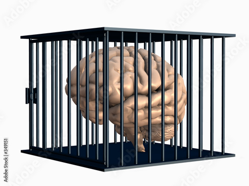 Canvas-taulu brain trapped in cage.