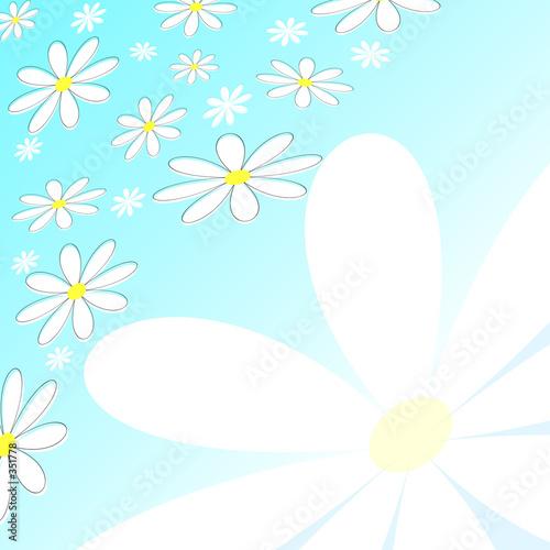 Foto-Stoff bedruckt - daisies (von Kirsty Pargeter)