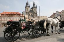 Prague-market