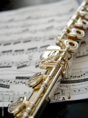 Cuadros en Lienzo flute on music notes