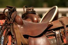 Saddle Gear