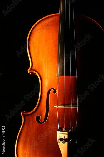 Fotografie, Obraz  violin