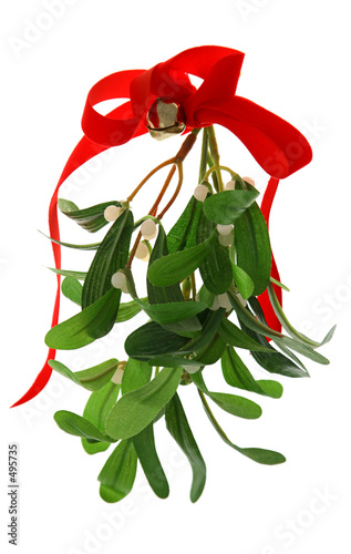 Fotografie, Obraz  christmas mistletoe isolated
