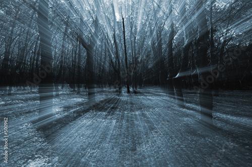 Pinturas sobre lienzo  mistery forest