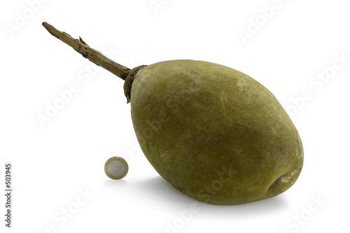 Keuken foto achterwand Baobab pain de singe