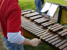 Xylophone Players In The Park