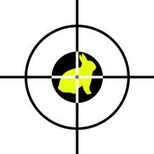 Target With Rabitt In Center