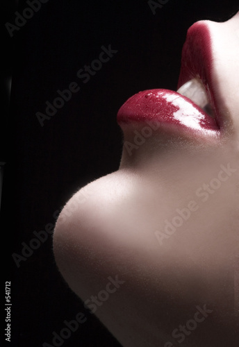 Photographie  sensual lips