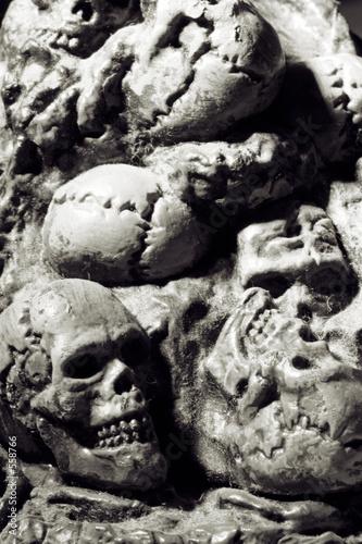 Fényképezés  skulls