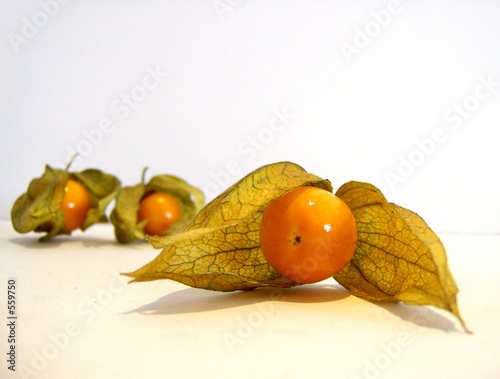 Valokuva  cerises de terre