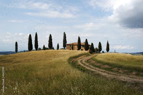 Poster Miel tuscan farmhouse