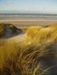 canvas print picture - dune au touquet
