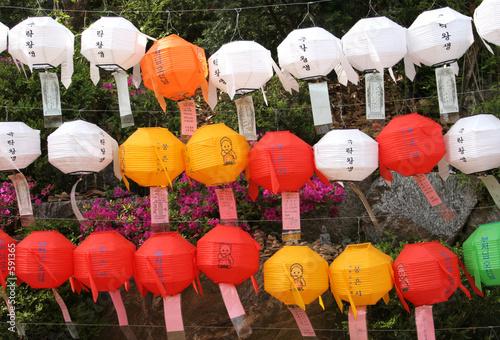 Photo  buddha's birthday