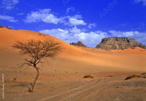 Fotobehang Algerije sahara désert