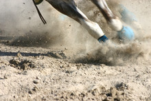 Horse Feet Racing