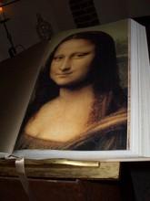 Da Vinci Kunst (2)