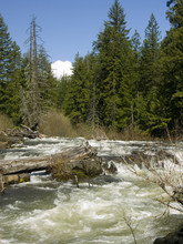 Rogue River - Union Creek, Oregon