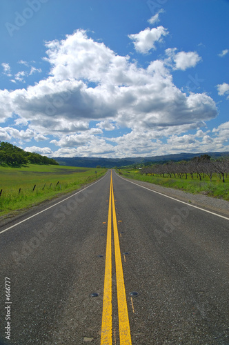 Fotomural country road