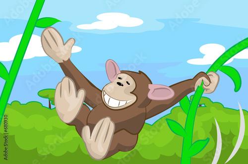 Foto op Aluminium Zoo monkey
