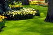 canvas print picture - garden in spring