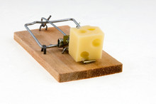 Mouse Trap With Cheese.