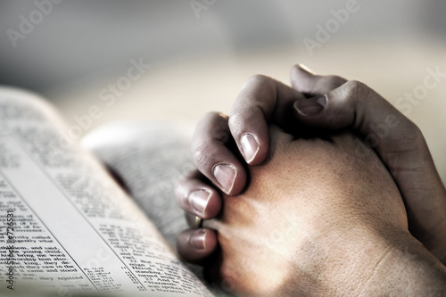 Fotografie, Tablou  praying hands over a holy bible
