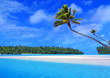 canvas print picture one foot island