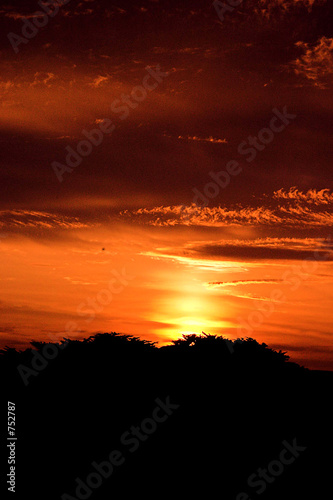 red sky Tablou Canvas