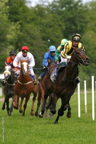 Fotomural horse-racing