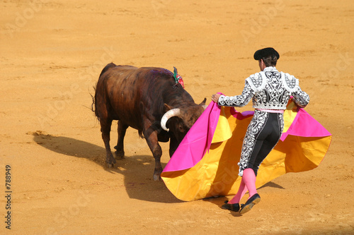 La pose en embrasure Corrida attacking bull.