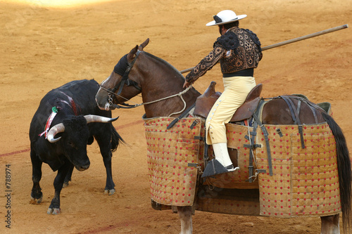 La pose en embrasure Corrida bullfighting in sevilla